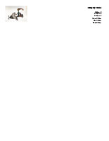 Flying01 Letterhead